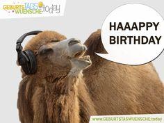 Happy Birthday - Geburtstagsbilder