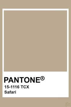 Pantone Nomad The bloom is really a image of kindness and acceptance; Azul Pantone, Paleta Pantone, Pantone Swatches, Pantone Colour Palettes, Pantone 2020, Color Swatches, Paint Palettes, Pantone Colours, Beige Color Palette