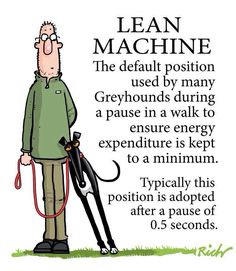 I million percent true! my greyhound loves to lean and if Im honest, I love it too. Keeps me warm on cold mornings, hee hee