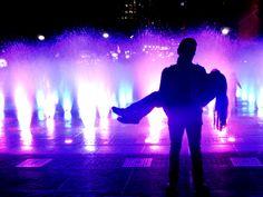 Título de la Obra:Lilac Lies. Autor: Bastida Colin Vanessa. Fecha de realización: 21/01/2016.  Apertura de diafragma: f4.2. Velocidad de obturación: 1/10. ISO: 800. Distancia focal: 15.7mm