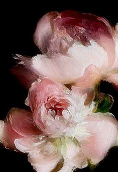 ideas flowers illustration rose inspiration for 2019 Peony Painting, Arte Floral, Abstract Flowers, Ink Drawings, Painting Inspiration, Flower Art, Peonies, Watercolor Art, Artwork