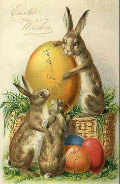 ❥ vintage Easter bunny card