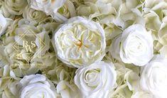 Blumenwand White Elegance mieten /Flowerwall White Elegance for hire White Elegance, Elegant, Romantic Backgrounds, Peonies, Hydrangeas, Baptisms, Classy, Chic