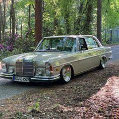 "Lowismylife on Instagram: ""Hollanda ❤️🇹🇷🧿 #bbs #slantlips  #mercedesbenz  #bagged #classiccar #stanced #low #stancemerc #germancar #vintage  #classics #w108 #sclass…"" Old Mercedes, Classic Mercedes, Mercedes Benz Cars, Benz S Class, Vintage Classics, Air Ride, Lamborghini, Classic Cars, Automobile"