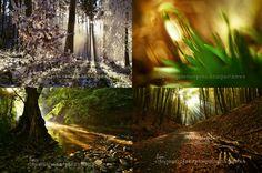 """Túlavý+2018+(A3)+Vyprávěj+mi+o+dešti,+tichu,+lese+O+hudbě,+co+větrem+se+nese+O+kráse,+lesku+řek+O+místech+jež+skutečný+jsou+lék+Autorský+kalendář+pro+rok+2018.+Kouzla+a+půvaby,+přírody+Bělokarpatské+v+""""království""""+Jižního+Valašska+:)+Možnost+formátu+a4."""