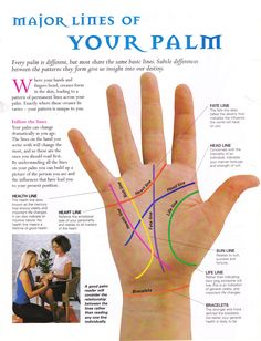 Palmistry for dummies. read your own palm! Palmistry Reading, Tarot Reading, Für Dummies, Talk To The Hand, Mind Body Spirit, Book Of Shadows, Insight, Writer, Knowledge