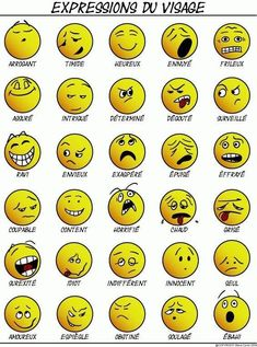 Educational infographic : expressions