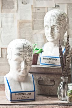 Phrenology Head Coin Bank from Earthbound Trading Co.