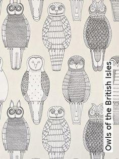 Tapete: Owls of the British Isles - TapetenAgentur