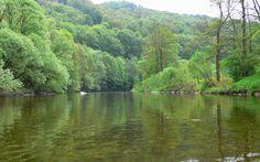 Drifting down Jizera river, in Czech Republic. Canoeing, Kayaking, Down The River, Canoe Trip, Czech Republic, Adventure, Water, Pictures, Outdoor