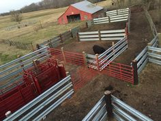 Get a Free Quote - Guardrail Panels. Looking for Used Guardrail? We have an endless supply of LiveStock Steel Guardrail Panels for cattle containment. Cattle Farming, Goat Farming, Rinder Stall, Show Cattle Barn, Cattle Corrals, Fencing For Sale, Farm Hacks, Barn Layout, Raising Cattle