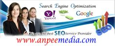 Search Engine Optimization Services  http://www.anpeemedia.com/search-engine-optimization-services/