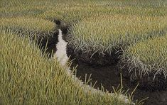 Summer Salt Marsh - Embroidery by Linda Behar completely amazing the detail and time involved, an amazing way to evolve and live your happy place
