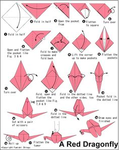 Origami dragonfly-easy to do with science class