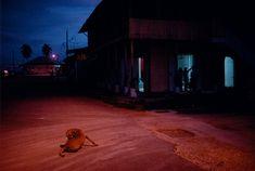 Alex Webb, Dusk in the town, Boca Del Toro, Panama, 1999 Light Photography, Color Photography, Street Photography, Cinematic Photography, Alex Webb, Snap Out Of It, New York Times Magazine, Steve Mccurry, Photographer Portfolio
