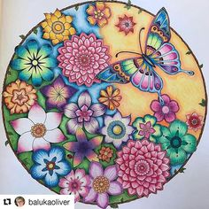 great work by @balukaoliver ・・・ Den magiske jungle#coloringbook#coloring#instacoloring#johannabasford#prismacolor#coloringforadults#mycreativeescape#giotto #johanna_basford #johanna#johanna_repost #magical #magicaljungle #lovethecolor @johannabasford_repost @johannabasfordfan @johannabasford #mindful #nostress #butterfly
