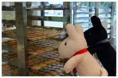 世界初!フランス生まれの人気絵本のキャラクター「リサとガスパール」のテーマパークが富士急ハイランドにオープン!
