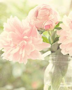 Romantic Flower Photo - Fine Art Flower Photography, peony, pink, shabby chic, pastel, feminine, wall decor, baby girl, nursery art