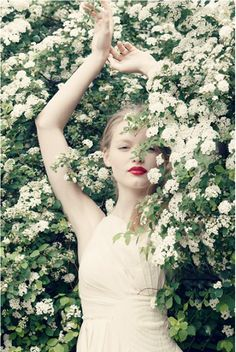 ~I AM the whiTe FLOwer oN the Tree ... anD the  w*h*i*T*e FLOwer is ME.  We aRE NatuRe ... we aRe One ~*  ... Denise Sage Schmidt <3