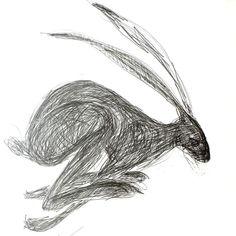 Ink Pen Drawings, Animal Drawings, Drawing Sketches, Sketching, Dress Sketches, Drawing Tips, Jack Rabbit, Rabbit Art, Silly Rabbit