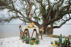 Citrus Beach Wedding - Bella Paris Designs