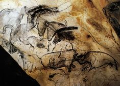 Connections Between Cave Paintings, Continents, and the Past
