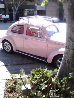 For Addyson Cool Cars girly Pink car 8531 Santa Monica Blvd West Hollywood, CA 90069 - Call or. West Hollywood, Pink Beetle, Kdf Wagen, Harley Davidson, Girly Car, Vw Vintage, Cute Cars, Fancy Cars, Vw Cars