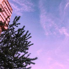 #selfart #pink #sky #nature