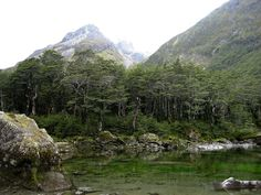 Blue lake Nelson New Zealand.jpg