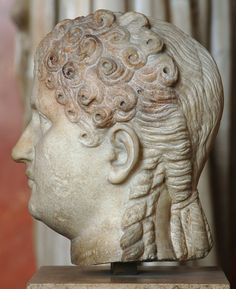 Possibly Agrippina the Younger, sister of Emperor Caligula, mother of Emperor Nero, wife of Emperor Claudius - profile, head of Roman sculpture (marble), 1st century AD, (Musée du Louvre, Paris).