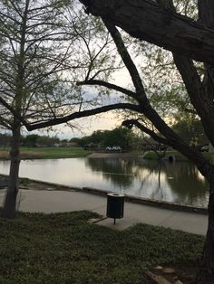 Notice the ducks swimming