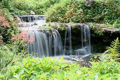 Kanapaha Botanical Gardens Water Fall by GatorCatts, via Flickr