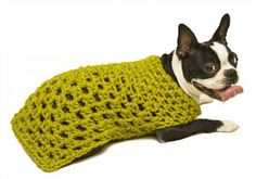 Almost done making this for Shea to wear in the Mutt Strut!  I did sweater in gray, will add some pink roses for accent.