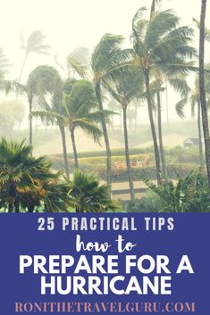 Preparing for a hurricane doesn't have to be stressful. Use these 25 tips to help you and your family stay safe during this unpredictable disaster. Best Travel Guides, Tips Online, Group Travel, Packing Tips For Travel, Your Family, Solo Travel, Scenery, Stress, United States