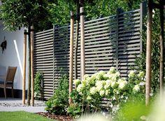 Sichtschutz Im Garten. | Malerblatt Medienservice | Green ... Passende Zaun Fur Den Garten