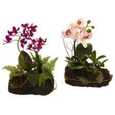 www.mytaiwantour.com 2 Piece Orchid Island Set