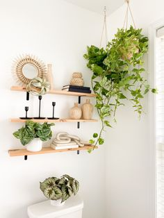 Artificial plants are the best way to add freshness and light into any space. Try a faux hanging plant in a basket, or a small simple artificial plant to add brightness into your shelf styling. Shop trending artificial plants at Afloral.com. Image by @modernly_you. Decorating Small Spaces, Decorating Your Home, Artificial Succulents, Silk Plants, Real Plants, Hanging Plants, Low Lights, Silk Flowers, House Plants