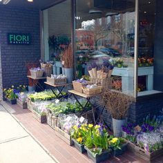 """""""EXCITED ABOUT SPRING? So are we!! #DreamingOfSpring #downtownoakville #freshflowers #SpringGardens #spring #flowers"""""""