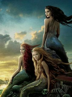 mythical creature are you? I thought this a beautiful picture of how stunning and mysterious these fantasy creatures can be.I thought this a beautiful picture of how stunning and mysterious these fantasy creatures can be. Evil Mermaids, Fantasy Mermaids, Mermaids And Mermen, Fantasy Creatures, Mythical Creatures, Mythological Creatures, Mermaid Home Decor, On Stranger Tides, Mermaid Pictures