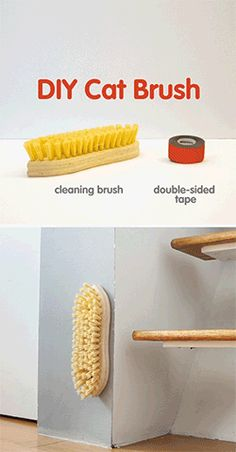 ♥ DIY Cat Stuff ♥   This DIY cat brush project will leave your kitten feline fine! Grooming your cute kitty is healthy for her coat and promotes bonding. Plus, it reduces hairballs and shedding while helping to spread natural oils over your munchkin's coat. All you need is a brush, some double sided tape and a stable surface to attach it to.