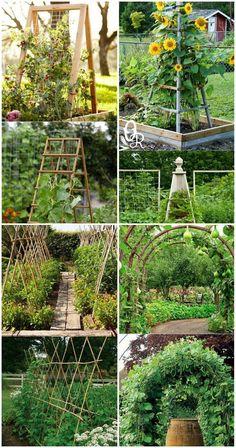 10 Vegetable Garden Trellis Ideas, Most Stylish as - Jardin Vertical Fachada - - Diy Trellis, Garden Trellis, Trellis Ideas, Garden Pool, Bean Trellis, Garden Table, Backyard Patio, Hanging Pots, Plantar