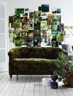 Pflanzenwand.
