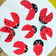 This week were learning all about the #metamorphosis with these cool ladybugs  if you open its wings youll find the phases of the  ladybugs life cycle. Egg larva pupa and adult. Were also playing games and learning about other species that go through the metamorphosis. Can you think of any? #aprendenjugandodesde2002 #playbasedlearning #englishisfun #ladybug