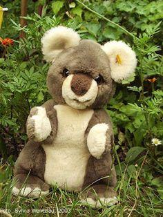 Koalabär von Steiff
