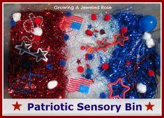 Growing A Jeweled Rose: Patriotic 4th of July Sensory Bin