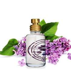 French Lilac by Pacifica Spray Perfume Women's Perfume fl oz : Target Roll On Perfume, Best Perfume, Perfume Oils, Perfume Bottles, Pacifica Perfume, Vegan Perfume, French Lilac, Celebrity Perfume, Hermes Perfume
