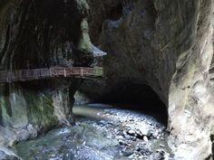 Visite Waterfall, Outdoor, Travel, Outdoors, Waterfalls, Outdoor Games, Outdoor Living, Garden