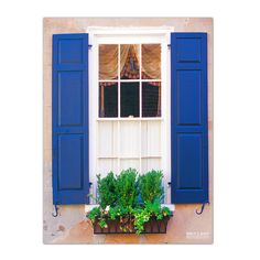 'Blue Shutters' by Bruce Bain Photographic Printt on Wrapped Canvas