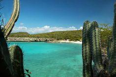 Grote Knip @ Curaçao