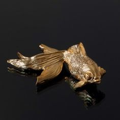 Haoshi | Gold Goldfish clock | Object & line